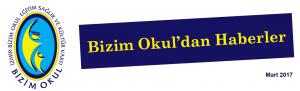 bulten 2017-3