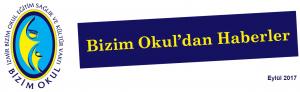 bulten 2017-6